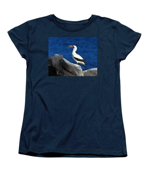 Nazca Booby Women's T-Shirt (Standard Cut) by Tony Beck
