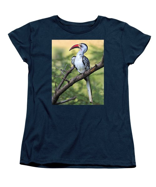 Red-billed Hornbill Women's T-Shirt (Standard Cut) by Tony Beck