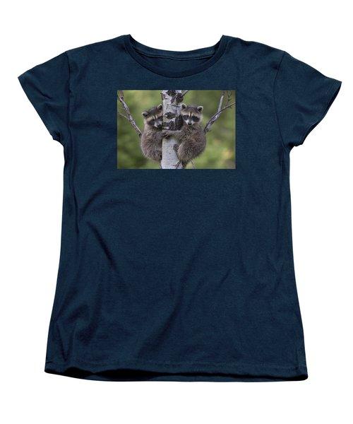 Raccoon Two Babies Climbing Tree North Women's T-Shirt (Standard Cut) by Tim Fitzharris