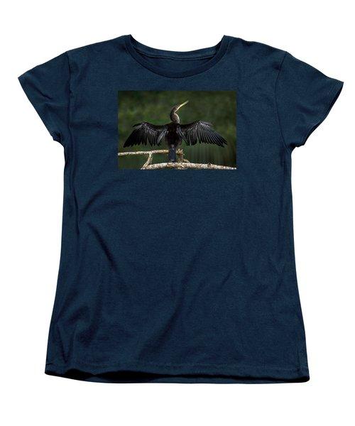 Anhinga Anhinga Anhinga Perching Women's T-Shirt (Standard Cut) by Panoramic Images