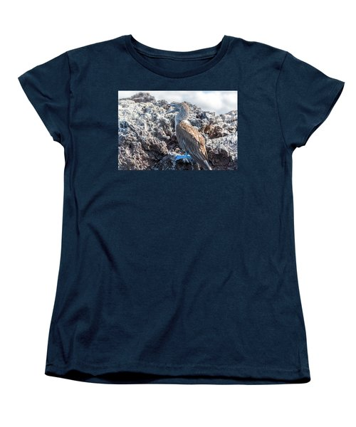 Blue Footed Booby Women's T-Shirt (Standard Cut) by Jess Kraft