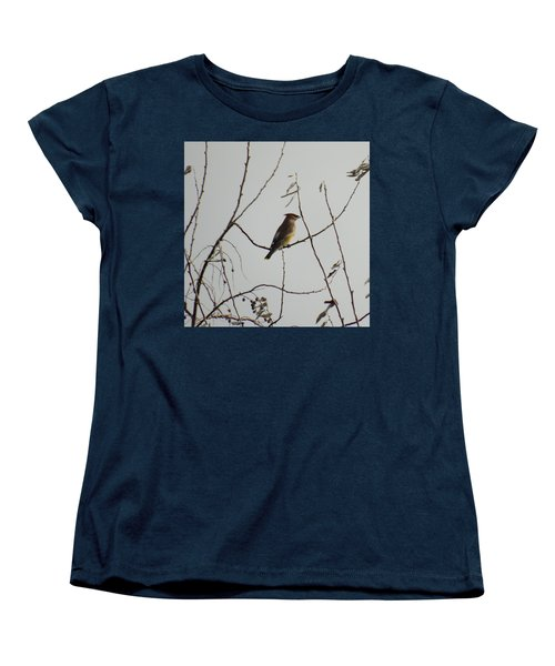 Cedar Wax Wing In Tree Women's T-Shirt (Standard Cut) by Kenneth Willis