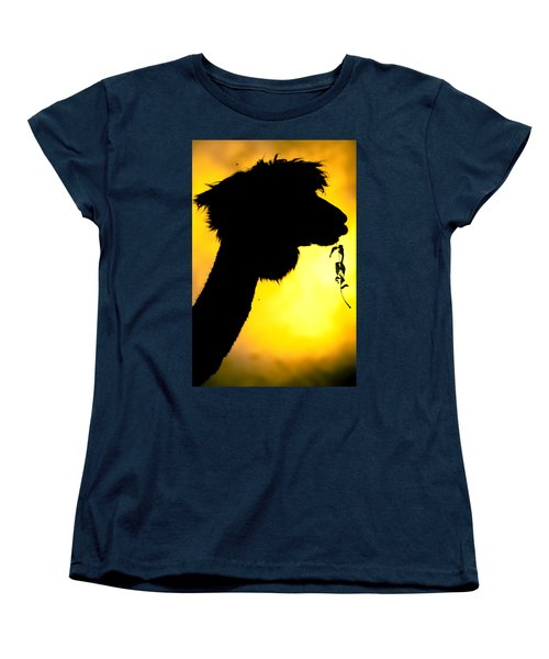 Endless Alpaca Women's T-Shirt (Standard Cut) by TC Morgan