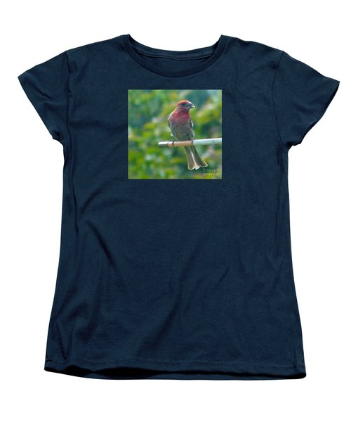 Male Crossbill With Sunflower Seed    August  Indiana Women's T-Shirt (Standard Cut) by Rory Cubel