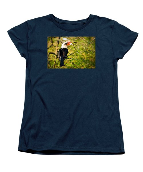 Male Von Der Decken's Hornbill Women's T-Shirt (Standard Cut) by Adam Romanowicz