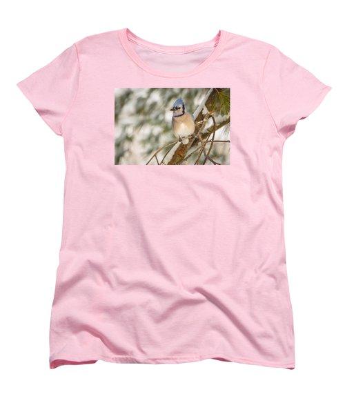 Blue Jay Women's T-Shirt (Standard Cut) by Everet Regal