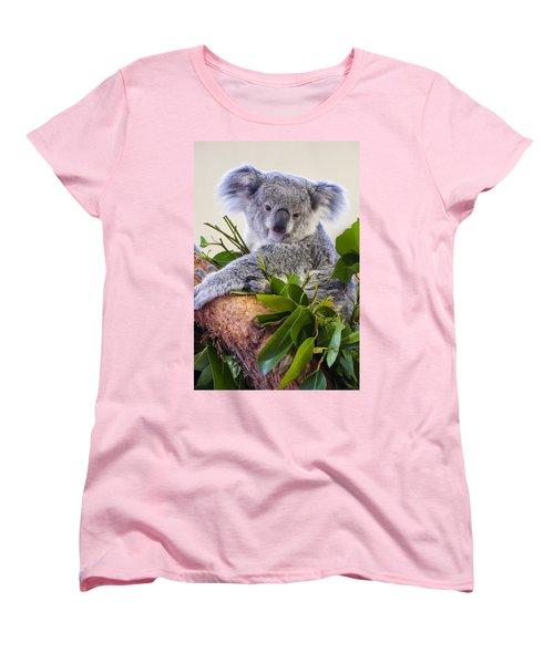 Koala On Top Of A Tree Women's T-Shirt (Standard Cut) by Chris Flees