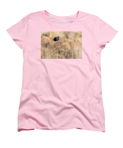 Springtime Song Women's T-Shirt (Standard Cut) by Bill Wakeley