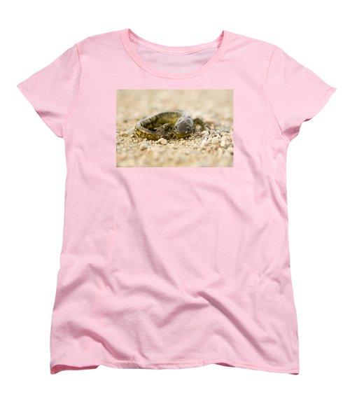 Close Up Tiger Salamander Women's T-Shirt (Standard Cut) by Mark Duffy