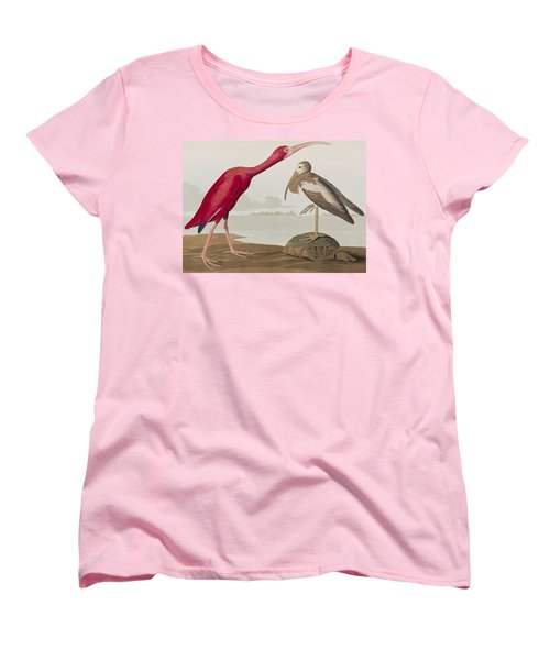 Scarlet Ibis Women's T-Shirt (Standard Cut) by John James Audubon