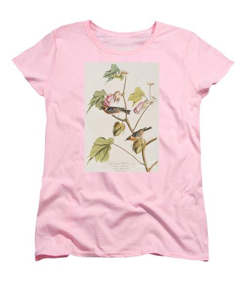 Bay Breasted Warbler Women's T-Shirt (Standard Cut) by John James Audubon
