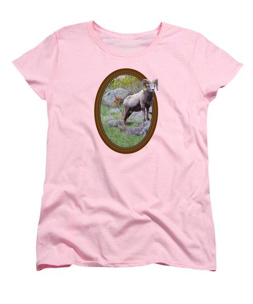 Colorado Bighorn Women's T-Shirt (Standard Cut) by Shane Bechler