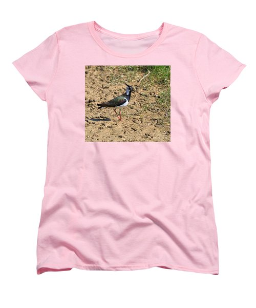 Northern Lapwing Women's T-Shirt (Standard Cut) by Louise Heusinkveld