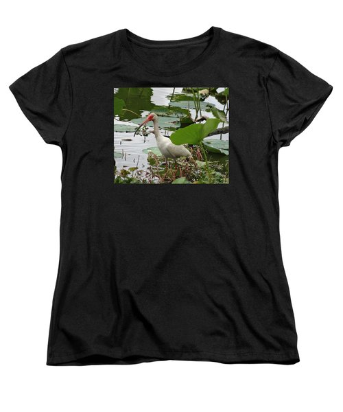American White Ibis In Brazos Bend Women's T-Shirt (Standard Cut) by Dan Sproul