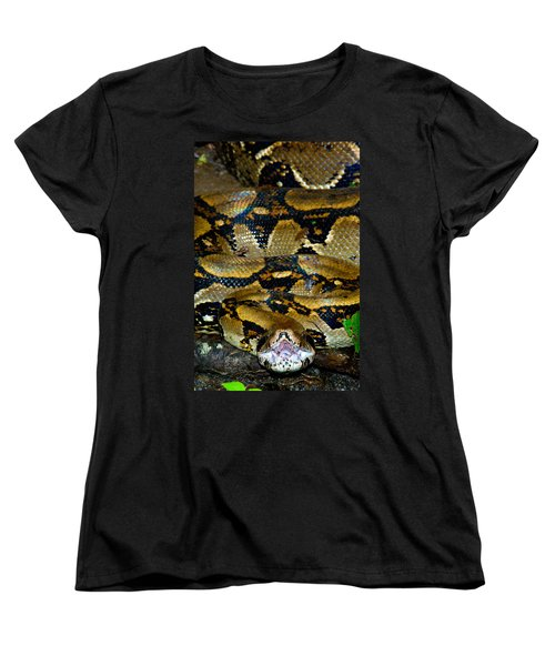 Close-up Of A Boa Constrictor, Arenal Women's T-Shirt (Standard Cut) by Panoramic Images
