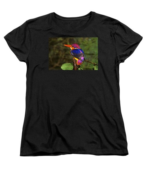 India Three Toed Kingfisher Women's T-Shirt (Standard Cut) by Anonymous
