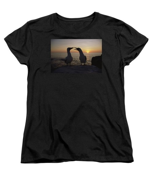 Masked Booby Couple Courting Galapagos Women's T-Shirt (Standard Cut) by Konrad Wothe
