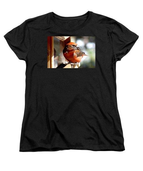 Red Crossbill Women's T-Shirt (Standard Cut) by Marilyn Burton