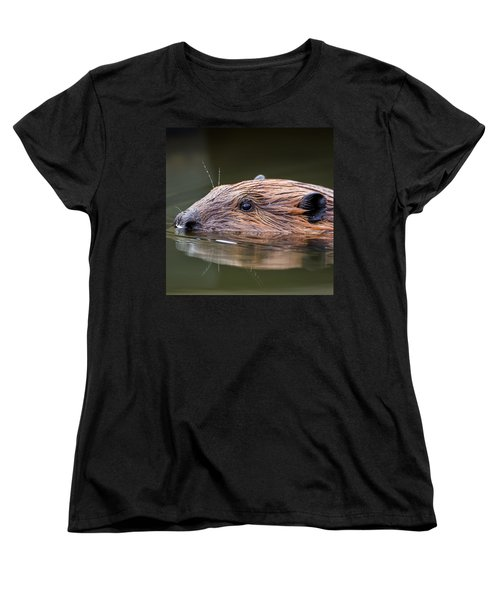 The Beaver Square Women's T-Shirt (Standard Cut) by Bill Wakeley
