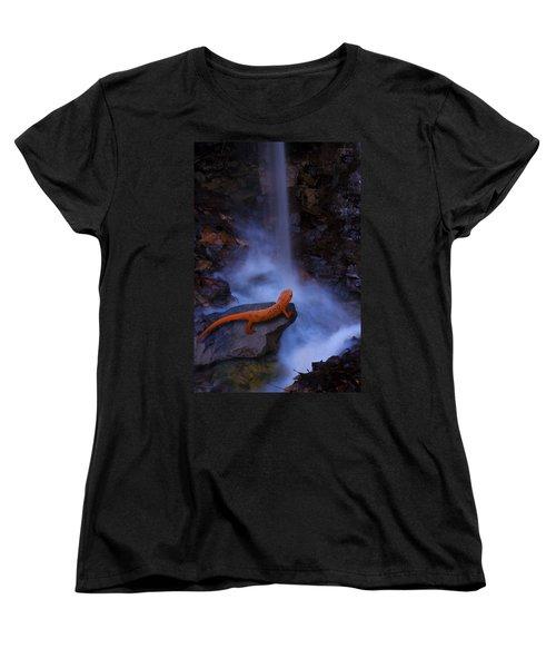 Newt Falls Women's T-Shirt (Standard Cut) by Ron Jones