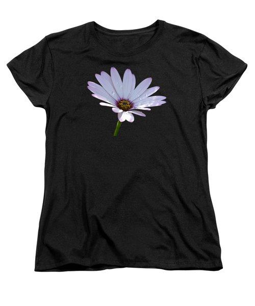 African Daisy Women's T-Shirt (Standard Cut) by Scott Carruthers