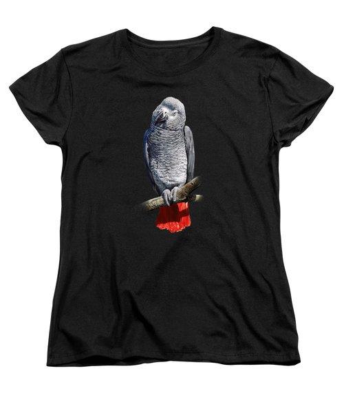African Grey Parrot C Women's T-Shirt (Standard Cut) by Owen Bell