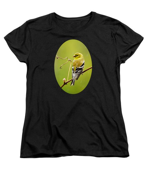 American Goldfinch In The Rain Women's T-Shirt (Standard Cut) by Christina Rollo