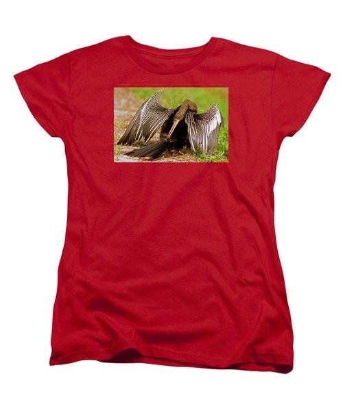 Anhinga Anhinga Anhinga Preening Women's T-Shirt (Standard Cut) by Millard H. Sharp