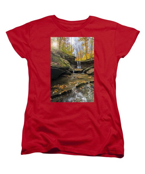 Autumn Flows Women's T-Shirt (Standard Cut) by James Dean