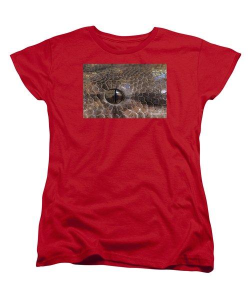 Boa Constrictor Women's T-Shirt (Standard Cut) by Chris Mattison FLPA
