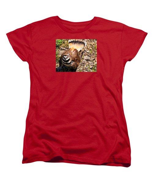 Killdeer On Its Nest Women's T-Shirt (Standard Cut) by Chris Flees