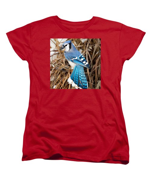 Portrait Of A Blue Jay Square Women's T-Shirt (Standard Cut) by Bill Wakeley