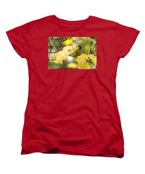 Sensibly Dressed - Featured 3 Women's T-Shirt (Standard Cut) by Alexander Senin