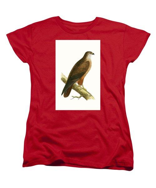 African Buzzard Women's T-Shirt (Standard Cut) by English School