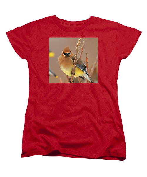 Cedar Wax Wing Women's T-Shirt (Standard Cut) by Carl Shaw