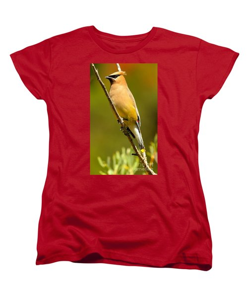 Cedar Waxwing Women's T-Shirt (Standard Cut) by Adam Jewell