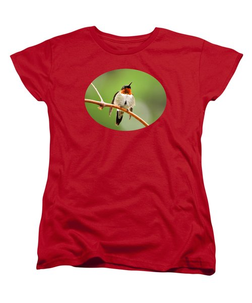 Male Ruby-throated Hummingbird Women's T-Shirt (Standard Cut) by Christina Rollo