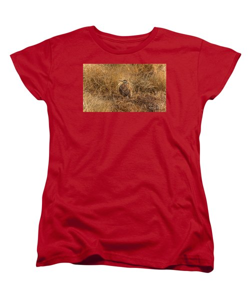 Meadowlark Hiding In Grass Women's T-Shirt (Standard Cut) by Robert Frederick