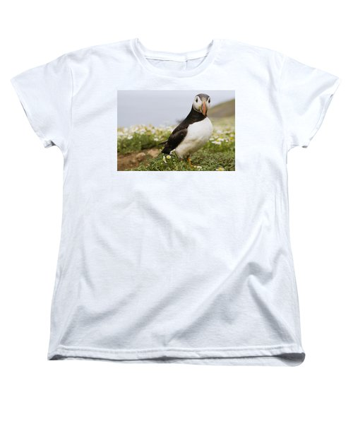 Atlantic Puffin In Breeding Plumage Women's T-Shirt (Standard Cut) by Sebastian Kennerknecht