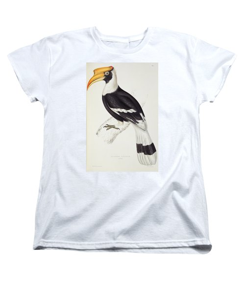 Great Hornbill Women's T-Shirt (Standard Cut) by John Gould