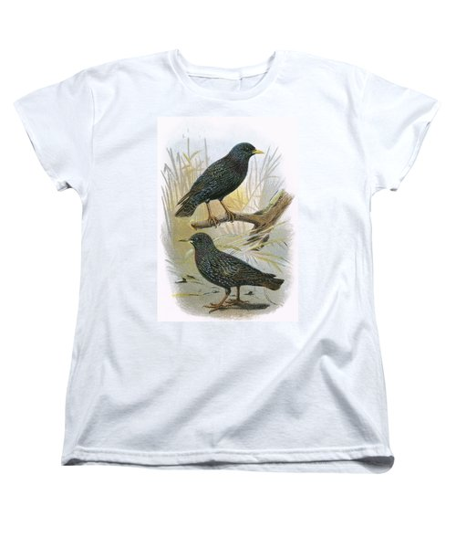 Common Starling Top And Intermediate Starling Bottom Women's T-Shirt (Standard Cut) by English School