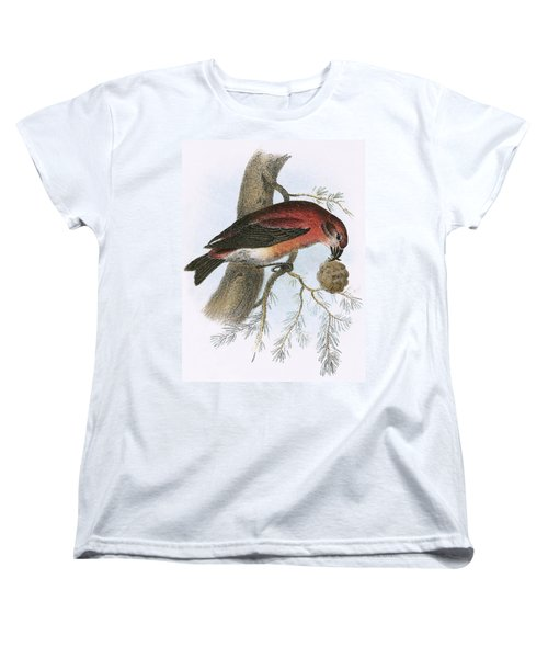 Crossbill Women's T-Shirt (Standard Cut) by English School