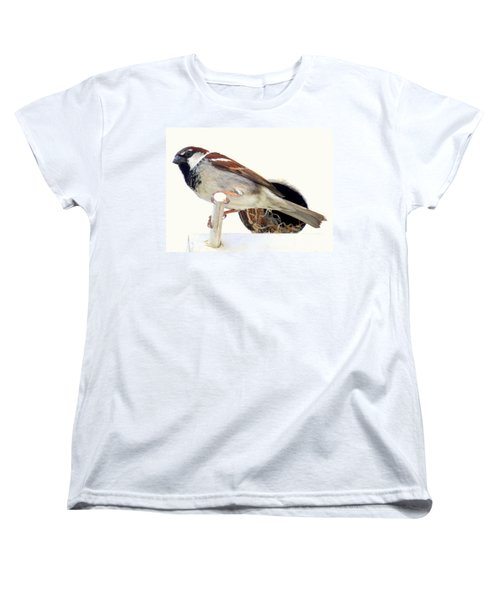 Little Sparrow Women's T-Shirt (Standard Cut) by Karen Wiles
