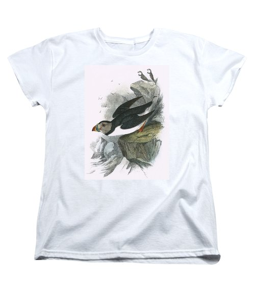 Puffin Women's T-Shirt (Standard Cut) by English School