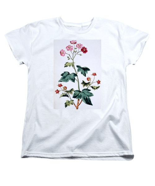 Sweet Canada Raspberry Women's T-Shirt (Standard Cut) by John Edwards