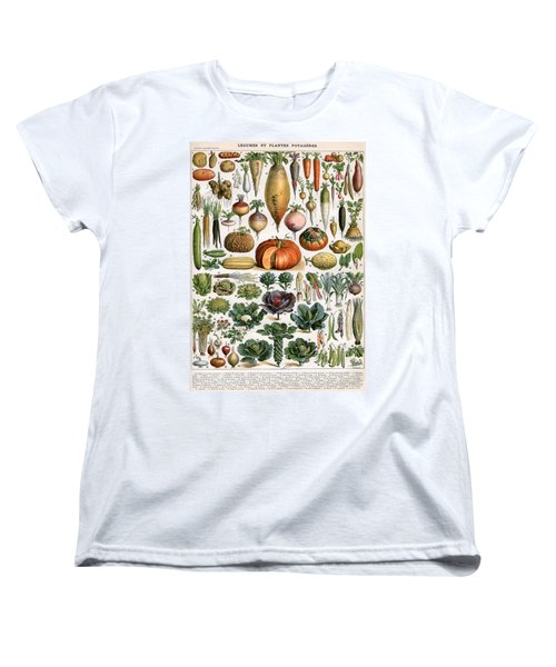 Illustration Of Vegetable Varieties Women's T-Shirt (Standard Cut) by Alillot