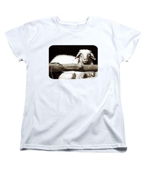 In The Pen Women's T-Shirt (Standard Cut) by Ethna Gillespie
