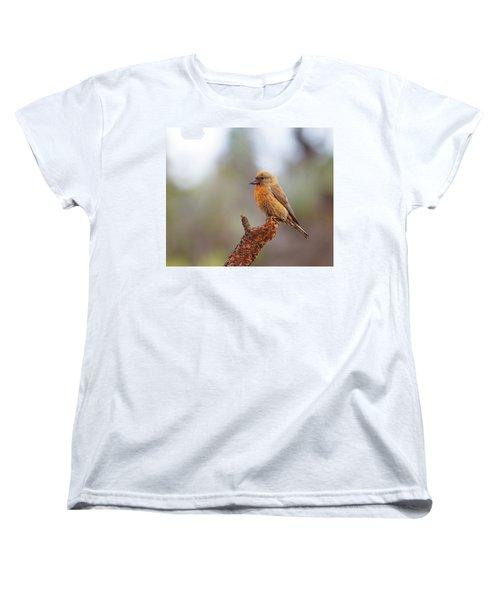 Male Red Crossbill Women's T-Shirt (Standard Cut) by Doug Lloyd