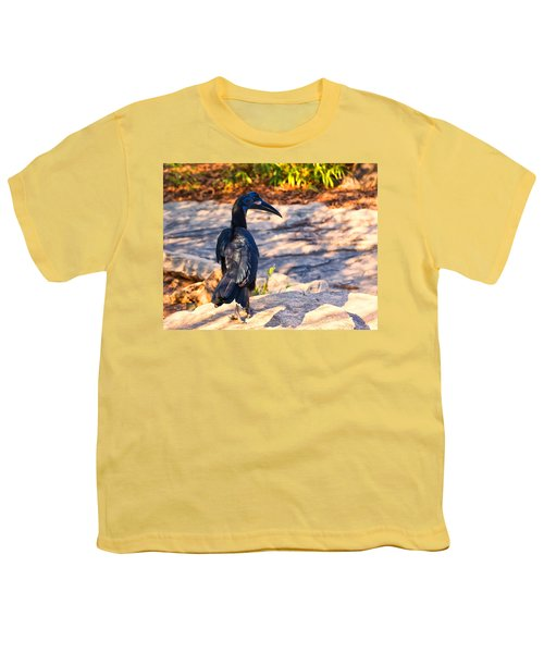 Abyssinian Ground Hornbill Youth T-Shirt by Chris Flees