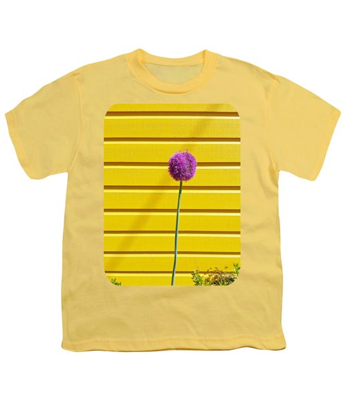 Lollipop Head Youth T-Shirt by Ethna Gillespie